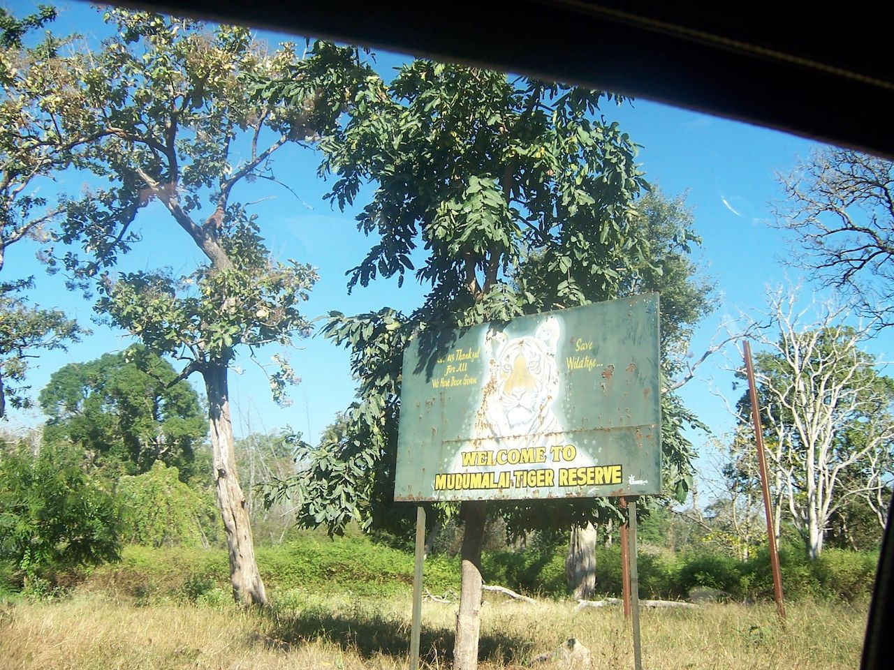 Mudumalai National Park.